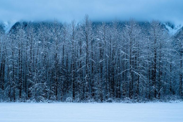 © osztaba_winter_20121230_DSCF9309-Edit