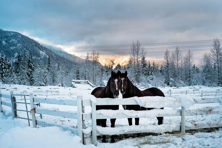© osztaba_winter_20121230_DSCF9343-Edit