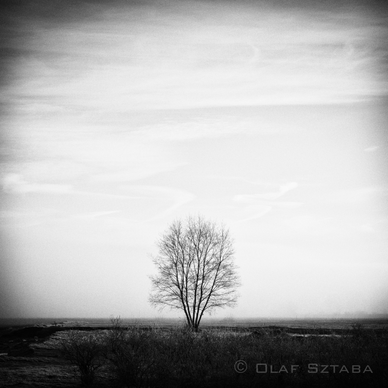 ©osztaba_pitt_meadows_ID_20130121__DSF1578-Edit