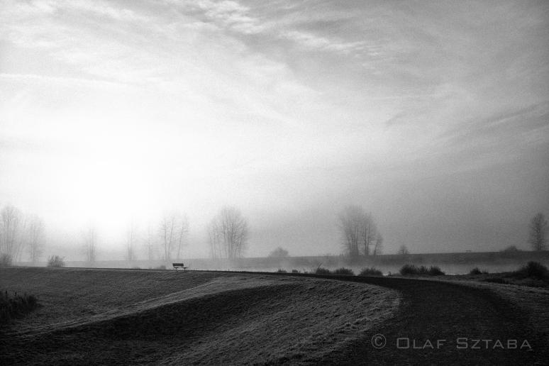 ©osztaba_pitt_meadows_ID_20140121__DSF2255-Edit