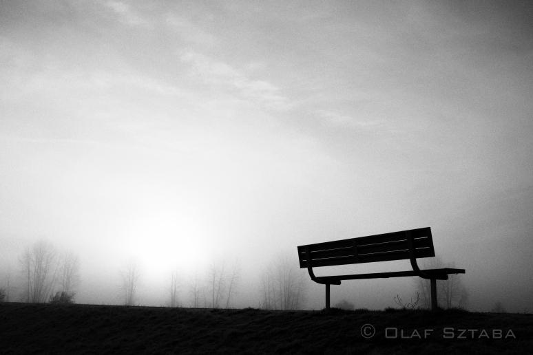 ©osztaba_pitt_meadows_ID_20140121__DSF2256-Edit