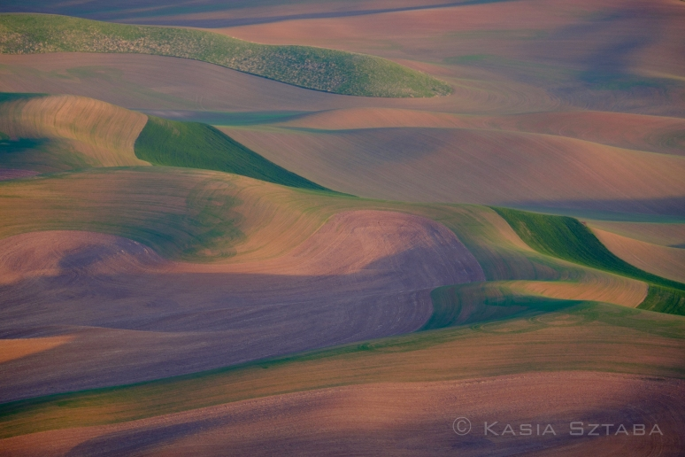 ©osztaba_palouse_20140517__DSF1693