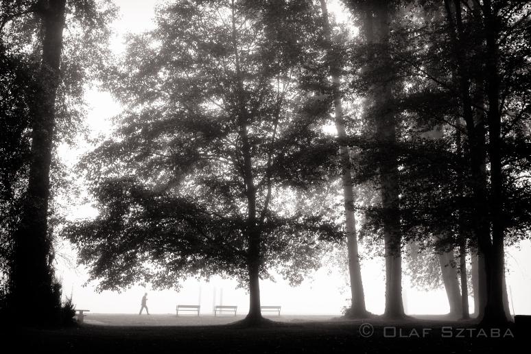 ©osztaba_barnet_20140920__DSF7747-Edit-2