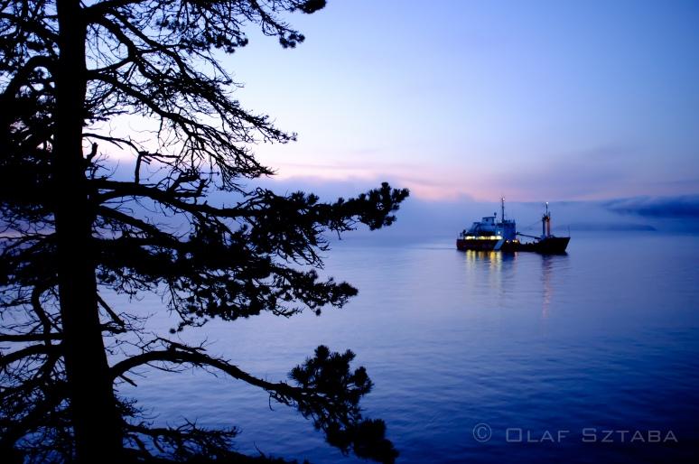 © osztaba_sunshine_coast_20111016_DSCF1367